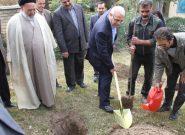 آیین درختکاری در سازمان مرکزی دانشگاه پیام نور