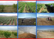 درآمد غیرشهریه ای دانشگاه پیام نور واحد گندمان از محل فعالیت در طرحهای باغداری و کشاورزی