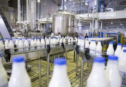 تکذیب وجود سم آفلاتوکسین در شیر