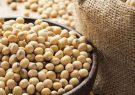 مصرف محصولات سویا موجب افزایش طول عمر می شود