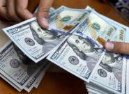 دولت میتواند دلار را کنترل کند اما نمیخواهد!