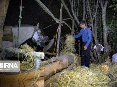 مشاغل فراموش شده (( چاربیداری )) در مازندران